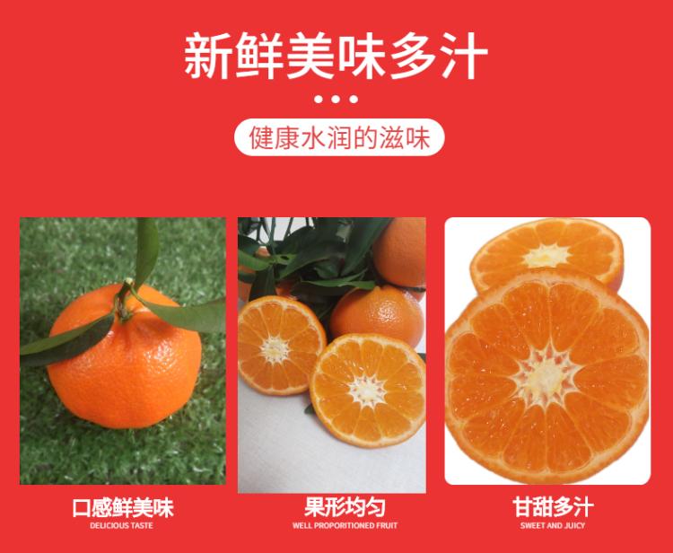 食品生鮮蔬菜西紅柿詳情頁-2.png